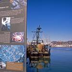 """San Francisco Port Walk"" by kphotos"