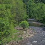 """""""River in Spring"""" by timseaver"""