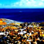 """""""ocean-view"""" by umboody"""