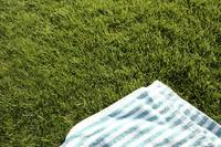 Blanket on Grass
