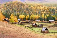Village in Autumn