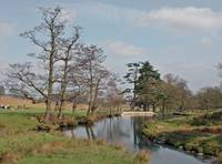 Bradgate Country Park  (14121-RDA)