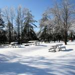 """""""winter at the park"""" by sherryswest"""
