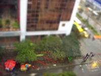 From my window (Only Tilt shift)