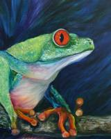 Red Eyed Tree Frog Profile