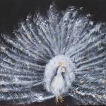 """White Peacock"" by galleries"