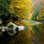 """""""reflection"""" by Hanule"""