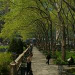 """Spring Walk, Bryant Park"" by FidelityPhotos"