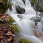 """Creek"" by BigRPhoto"