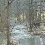 """Winter Stream"" by Philippa"