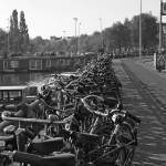 """Bikes upon Bikes"" by phoenixesrose"