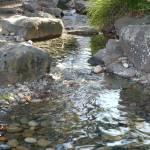 """""""Sunlight on Rocky Creek"""" by Groecar"""