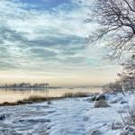 """Winter Morning"" by JuneMarie"