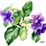 """""""Purple  Groxia"""" by clovia"""