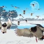 """blue snow Ducks"" by fishead"