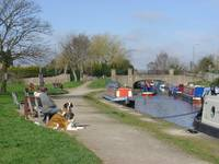Trent & Mersey Canal, Willington  (15771-RDA)