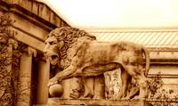 Stone Lion at Baltimore Museum Of Art