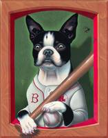 'Lucky' - Boston Terrier
