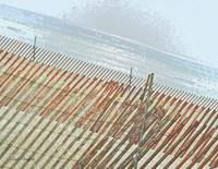 Snow Fence in plastic