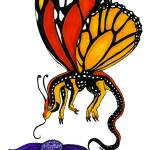 """Monarch Butterfly Dragonfly"" by Enchantments"