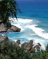 Snapper Rocks Qld Australia