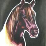 """horse"" by craigsmith"