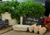 Aix-en-Provence--market scene, eggs, figs and herb