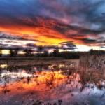 """""""Crown Hill Park Sunset"""" by markmortensen"""