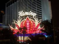 The Flamingo Hotel Las Vegas