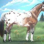 """Appaloosa Stallion"" by equineart4u"