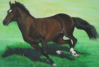 Bay Thoroughbred running