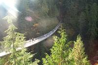 Sunlight over Capilano Bridge