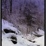 """""""winter hillside"""" by sherryswest"""