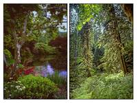 VANCOUVER ISLAND DIPTYCH