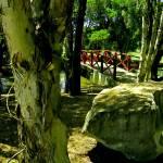 """Red Bridge"" by kiwihighlander"