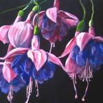 """""""Dancing fuchsias"""" by ArtbyMarionHedger"""