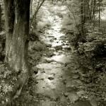 """""""creekbw"""" by Kathryn_s_Watson"""