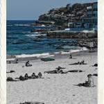 """""""Cliffs at Bondi Beach"""" by greenschist"""