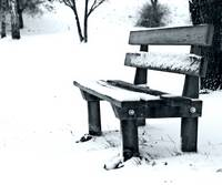 A Bench all in white