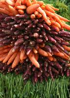 Alternating Carrots
