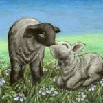 """Two lambs kissing"" by tanyabond"