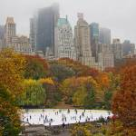 """""""Central Park Skaters"""" by JuneMarie"""