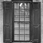 """Colonial WIndows, Charleston, South Carolina, Dece"" by eightarts"