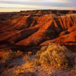 """Painted Desert #1"" by mikenorton"