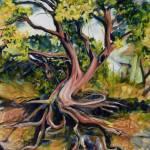 """""""Twisted Tree Figueroa"""" by jpomeroy3"""