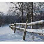 """winter fence 2"" by sherryswest"