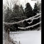 """""""Winter Pond"""" by sherryswest"""