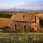 """Old House and the Teton Range"" by mikenorton"