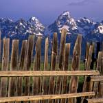 """Teton Fence"" by mikenorton"