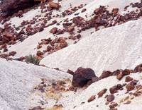Red Rocks White Ground